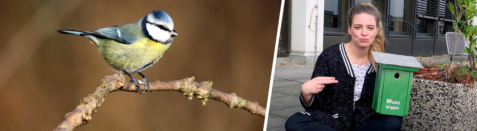 """Rahel Klein hält ein Vogelhäuschen mit der Aufschrift """"DRadio Wissen"""""""