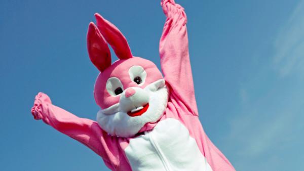 Pinker Hase springt in die Luft
