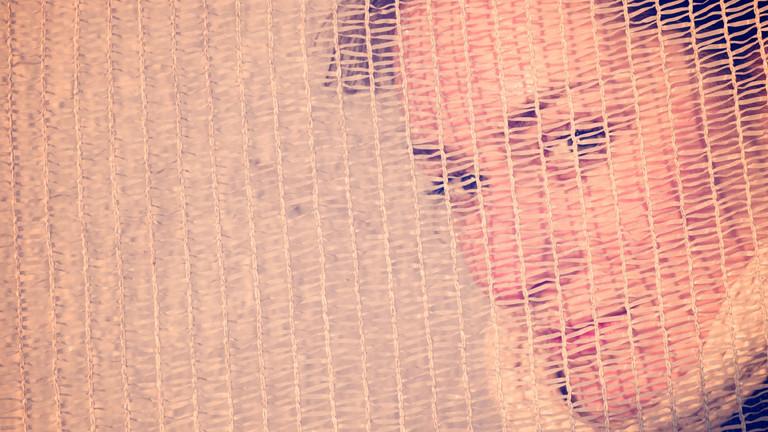 Eine Frau schaut durch ein Netz.