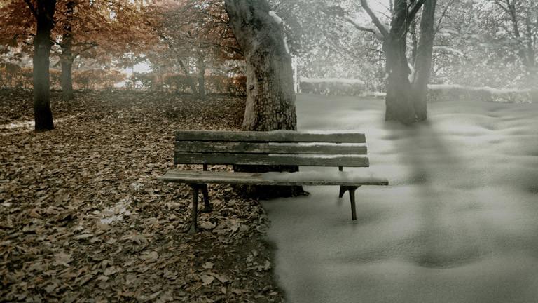 Eine Bank im Wald im Herbst und Winter.