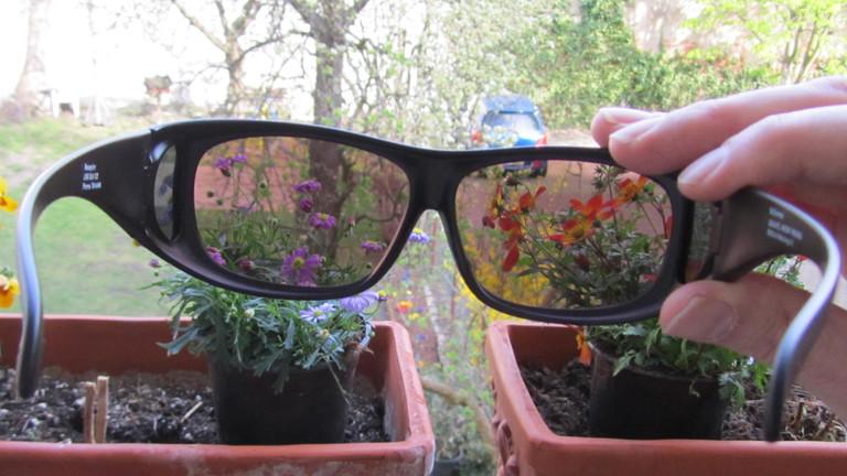 Rot Grün Schwäche Brille Kaufen