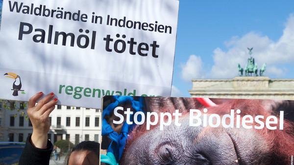 Demonstranten protestieren gegen die Nutzung von Palmöl.