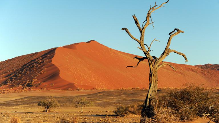 Die Namibwüste