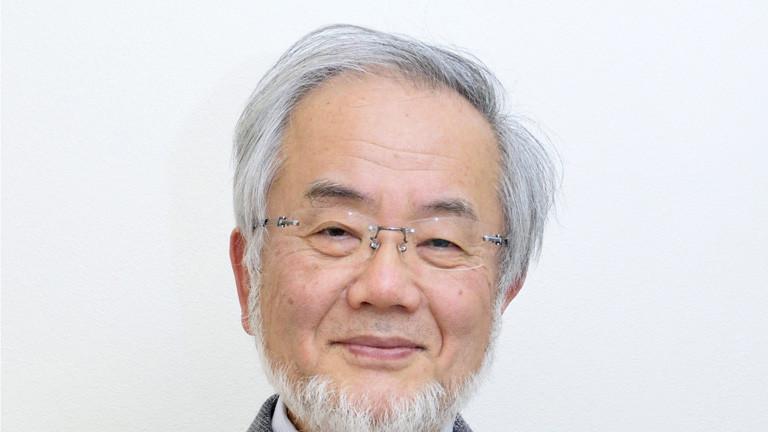 Medizin-Nobelpreisträger Yoshinori Ohsumi