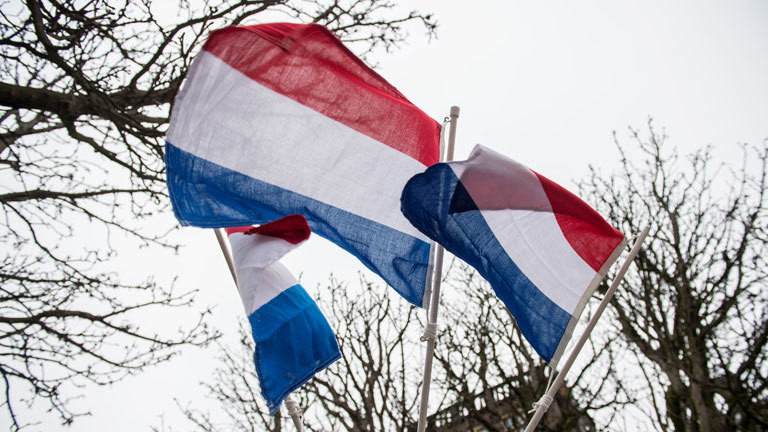 Niederländische Flaggen wehen am 14.03.2017 in Den Haag (Niederlande). In den Niederlanden wird am 15. März ein neues Parlament gewählt.
