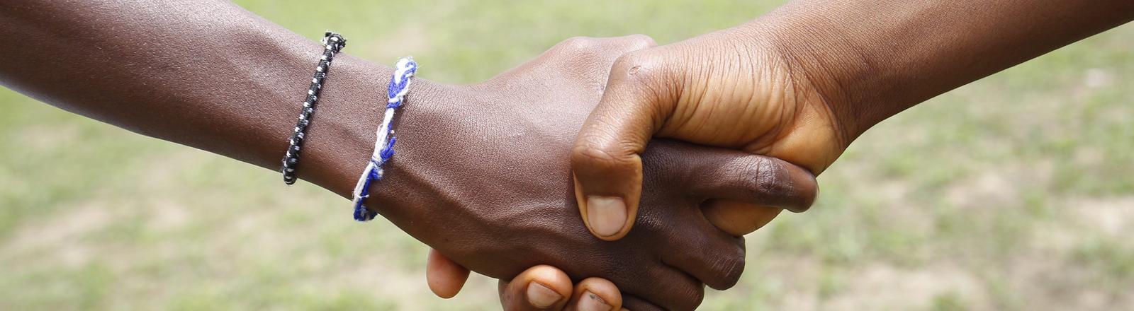 Gratulations-Handschlag: Westafrika ist frei von Ebola